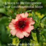 3-Ways-to-ReInvigorate-Your-Environmental-Mojo