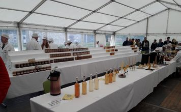 Judging underway in the marquee at the Phoenix Park Honey Show 2017. OPW.