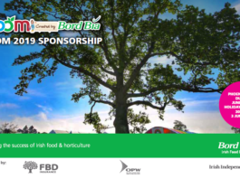 Bloom 2019 sponsorship opportunities
