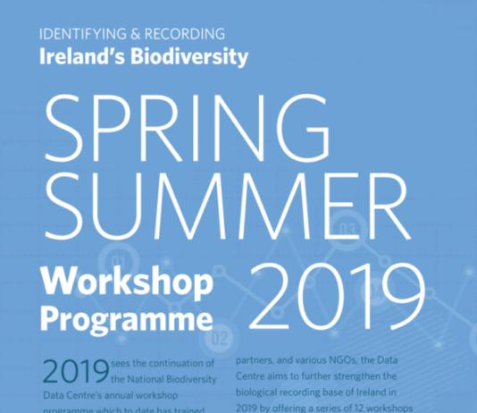 Spring-Summer-2019-Workshop-Programme.-600x848